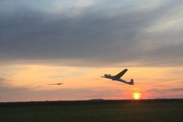 Sunrise fliegen mit der ASK 13